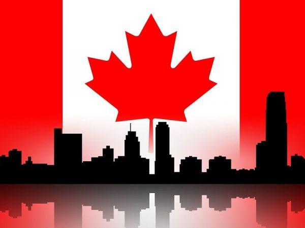谷歌加拿大SEO